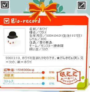 4002.jpg